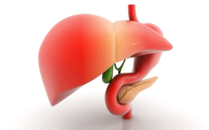 Болезни печени могут протекать безсимптомно