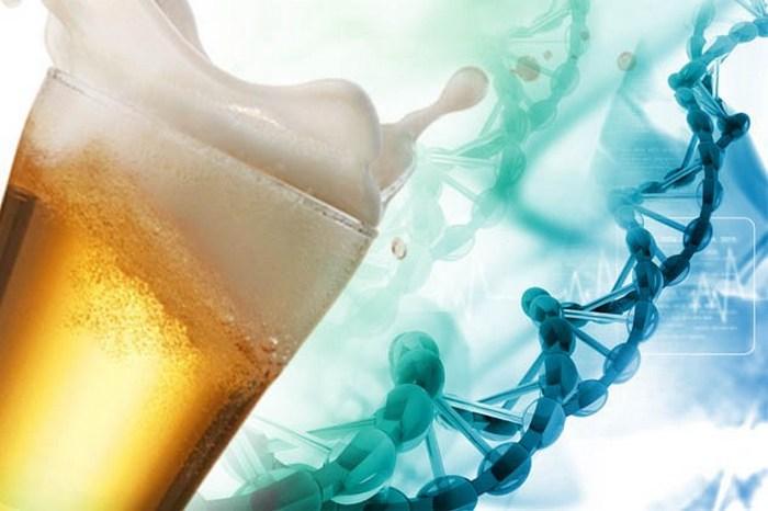 Алкогольное табу на генетическом уровне.