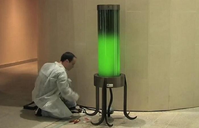 Технологии будущего: светильники из водорослей.