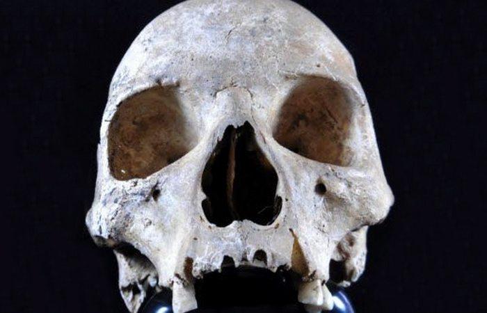Древняя торговля: череп женщины из Хоксна.