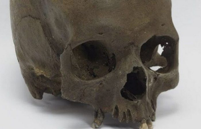 Женский череп  из Сомерсета.