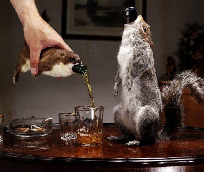 Пиво живое и мёртвое.