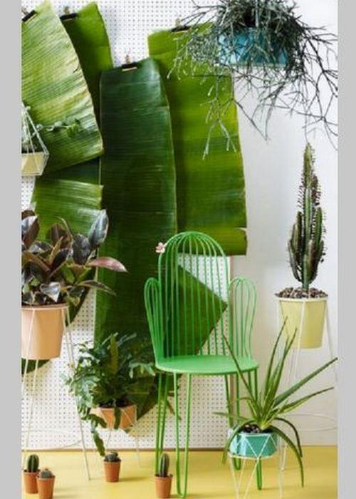 На этот кактус точно можно присесть.