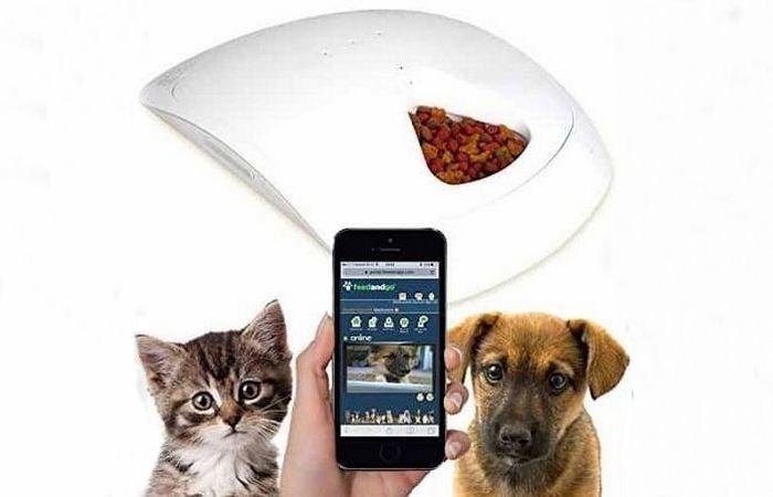 Автоматическая кормушка Feed и Go Smart Pet Feeder.