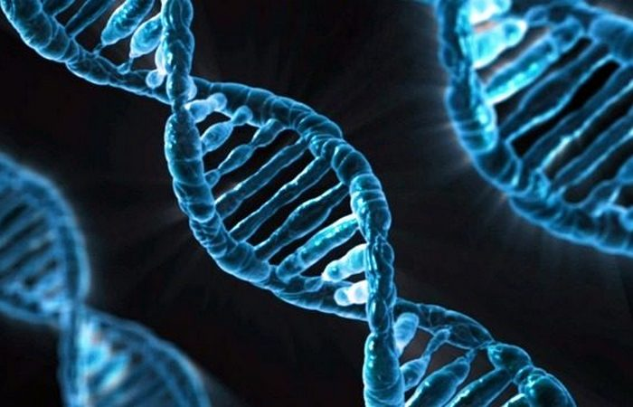 Открыты во сне: спираль ДНК, швейная машинка, гильотина.