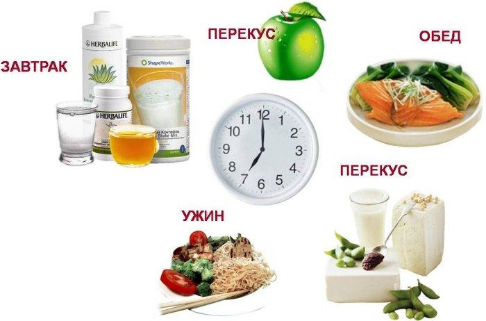 Питание по графику - залог здоровья.