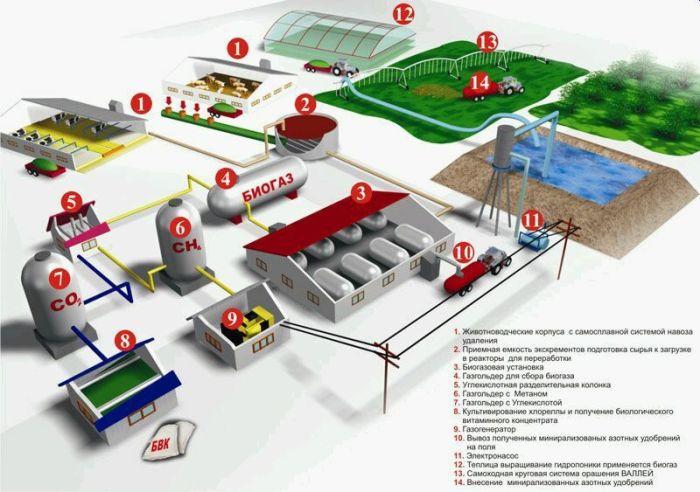 Биогаз из биомасс.