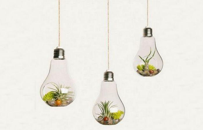 Креативный горшок «Растительная лампочка».