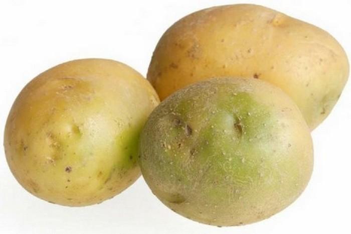 Зеленый картофель может убить.