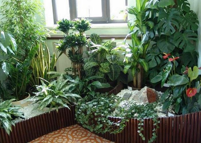 Приложение «Gardenia» поможет с планированием.