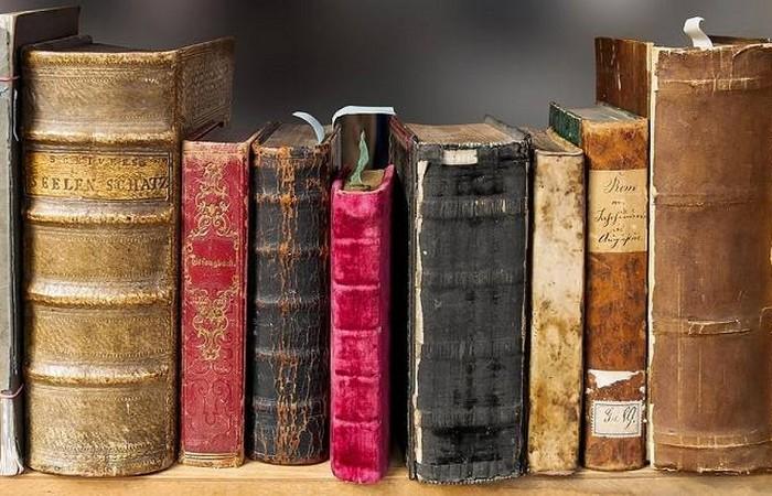 Тренировка мозга: читать, читать и еще раз читать!