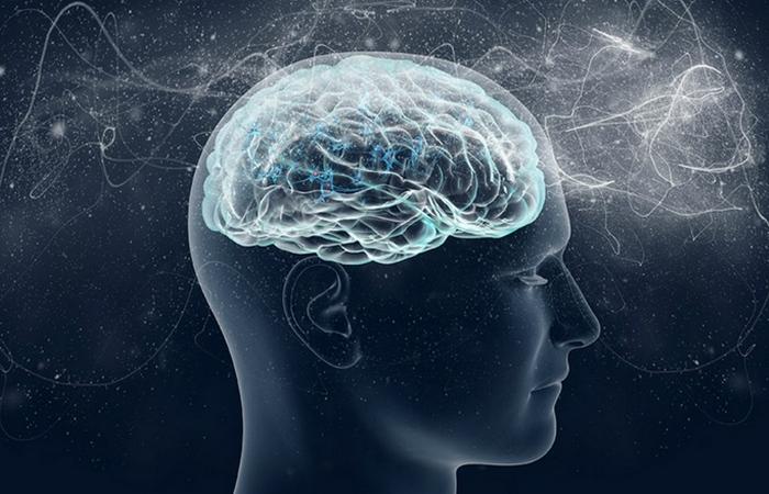 Человеческий мозг - тайна, загадка, космос...