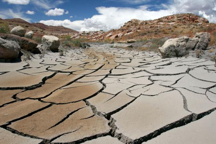 Глобальная засуха - угроза для человечества.