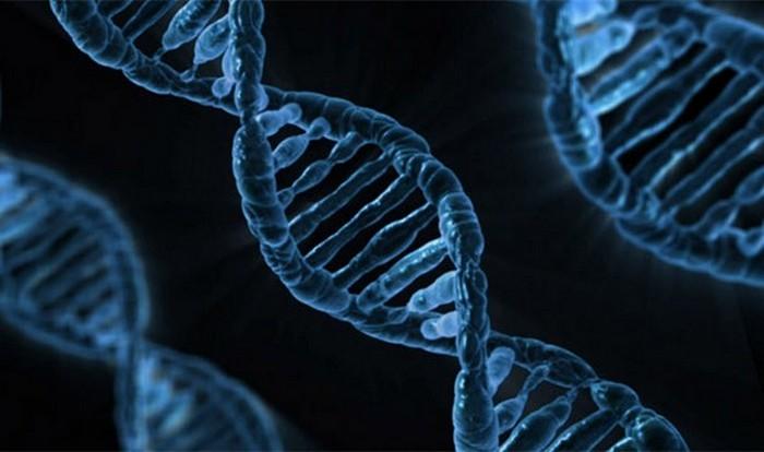 Гены на защите женщин.