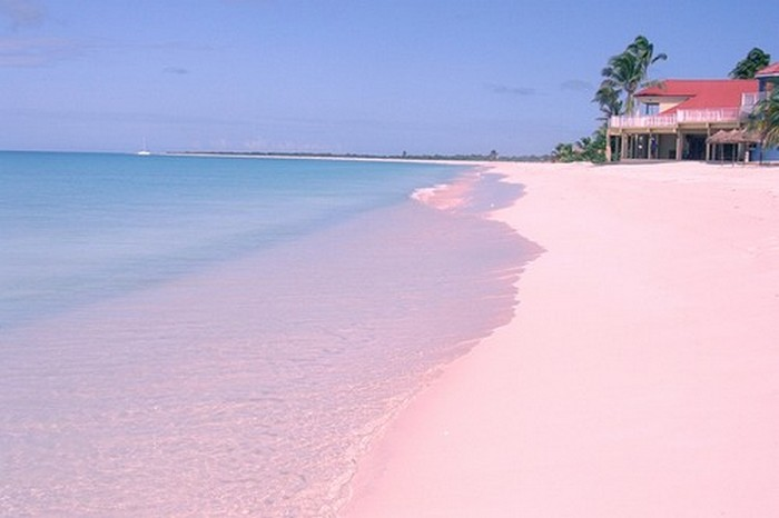 Розовый пляж «Барбуды».