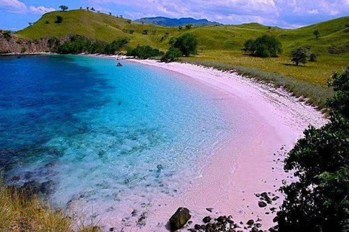 Розовый пляж «Танси».