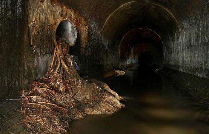 Главное помнить для чего предназначена канализация.