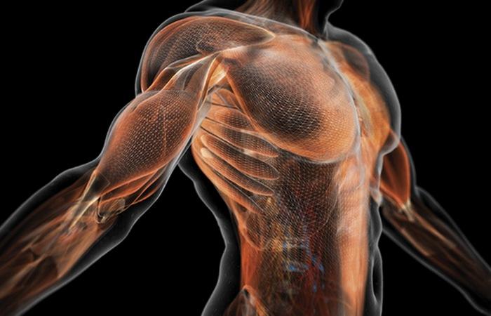Бег улучшит мышечный тонус.