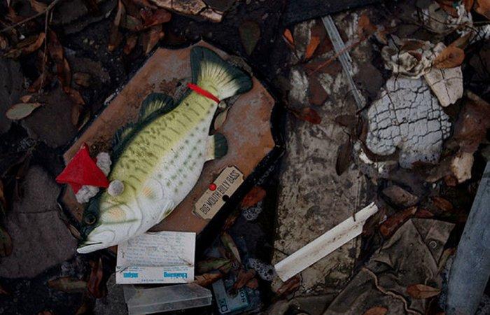 Странно, но прибыльно: поющая рыба «Big Mouth Billy Bass».