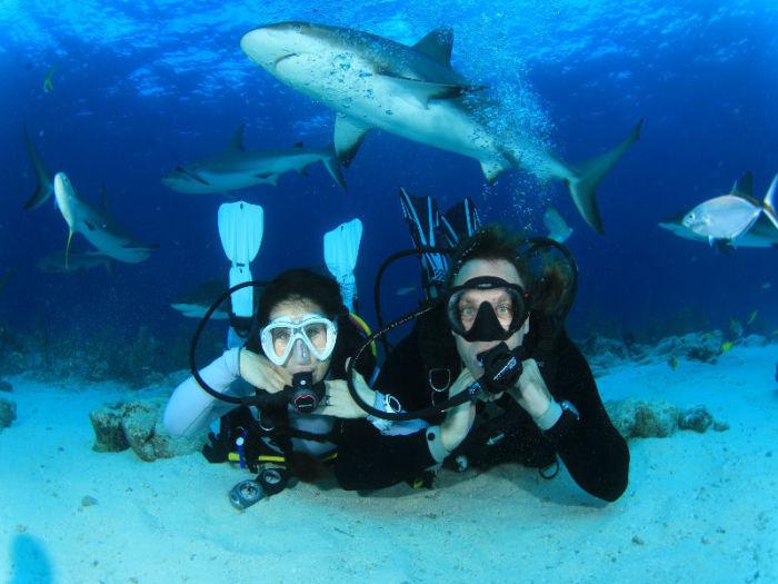 Свадьба с акулами.
