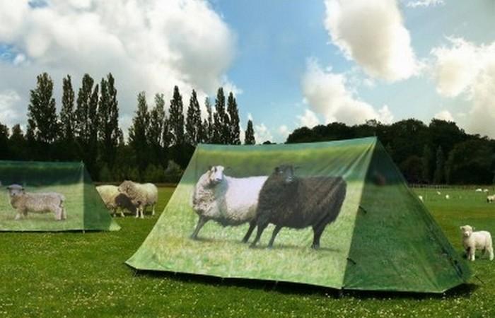 «Домик», который всегда со мной: палатка-пастбище.