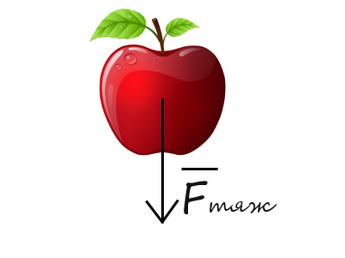Яблоко Ньютона.