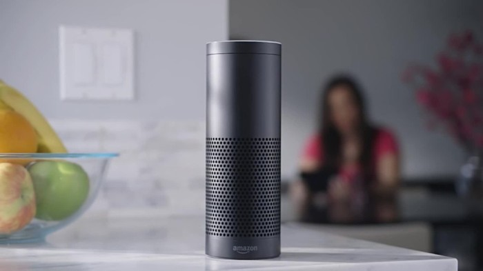 Amazon Echo - флагманский динамик 2018 года.