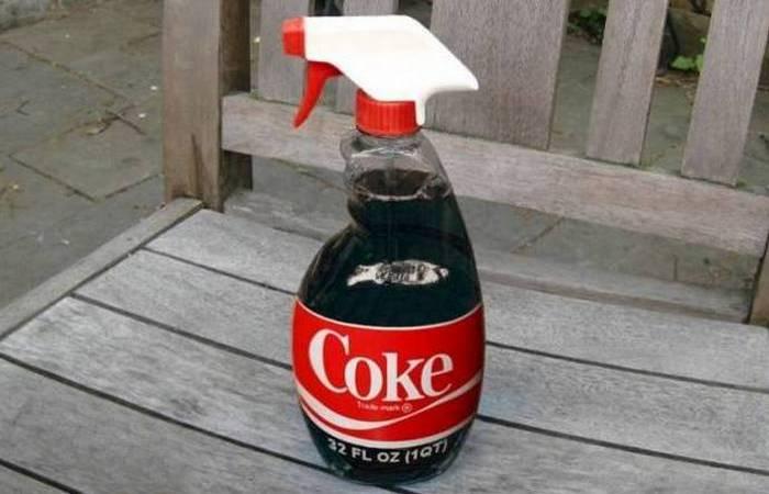 Полезный совет: Coca-Cola - эффективный убийца насекомых.