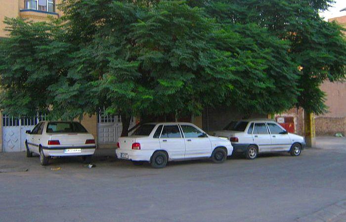 Три автомобиля, припаркованы в тени дерева в Индии. | Фото: commons.wikimedia.org.