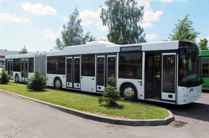 Этот современный автобус - продукция Минского автомобильного завода.