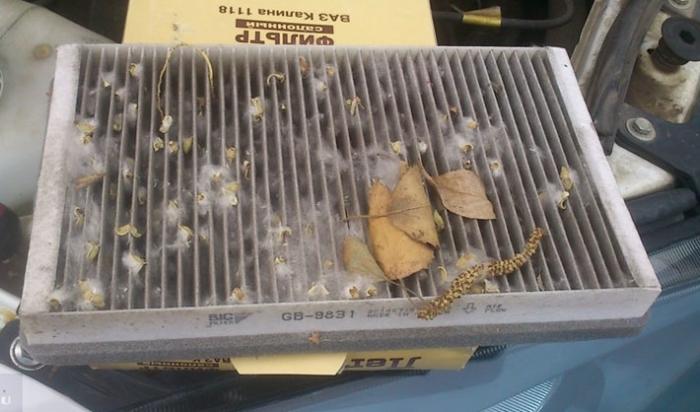 Пыль, пух, листья и сухие насекомые забивают фильтр и существенно ухудшают работу автомобиля. | Фото: carfrance.ru.