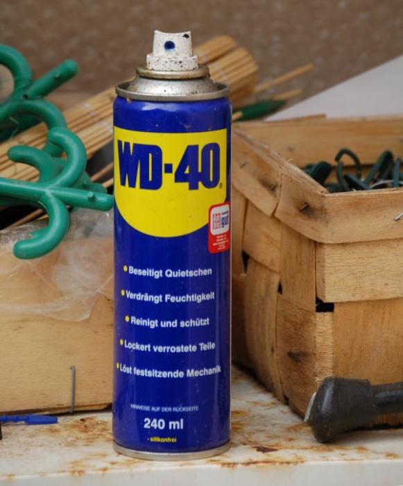 Прикипевший крепеж нужно смазать проникающей смазкой. | Фото: electro-shema.ru.