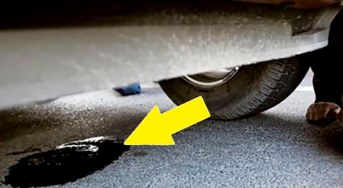 Потеки жидкости под машиной. | Фото: intex-press.by.