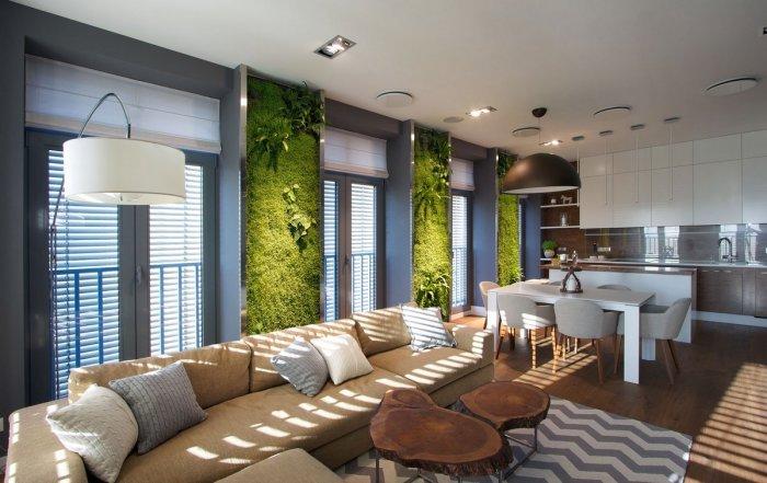 Живые растения для уюта в квартире.