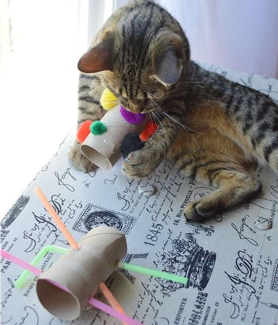 Такая игрушка увлечет кота надолго.