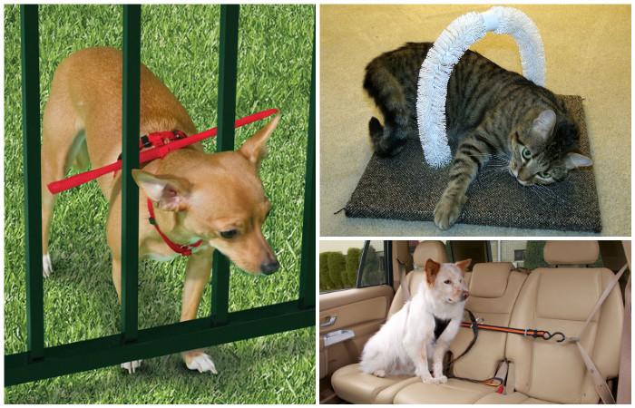 Полезные хитрости для владельцев кошек и собак.