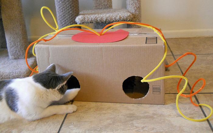 Коты обожают картонные коробки.