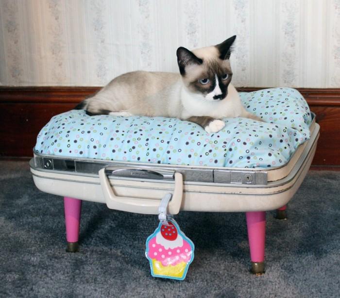 Лежанка из чемодана.