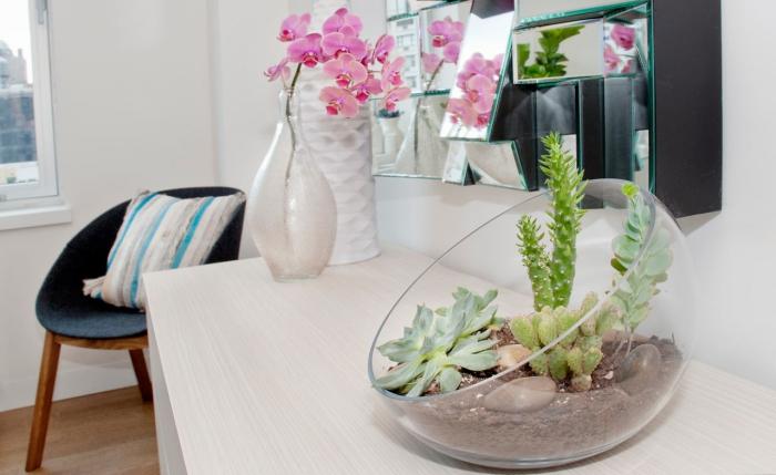 Растения добавляют уюта домашней атмосфере.