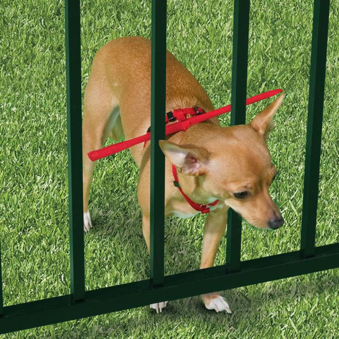 Для собак, которые любят лазить через заборы.