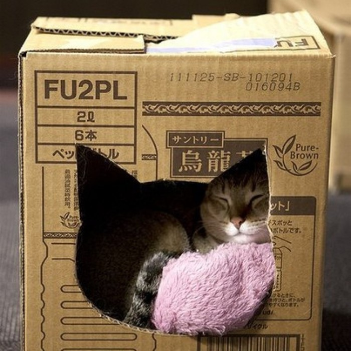 Лежанка из картона.
