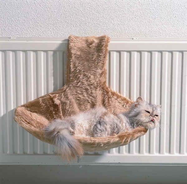 Лежанка для котов своими руками.