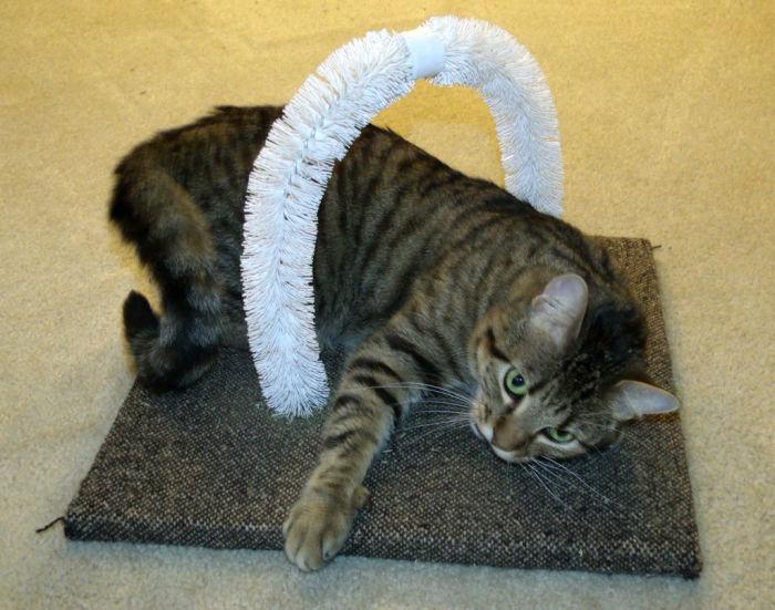 Чесалка для котов.