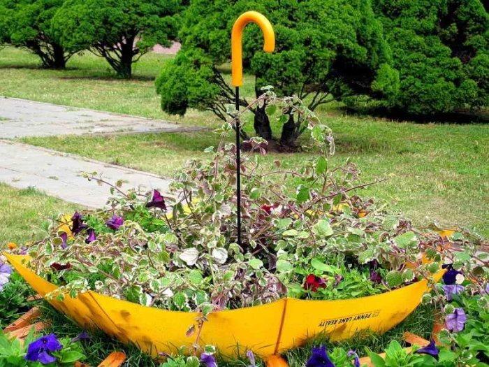 Цветник в старом зонтике.