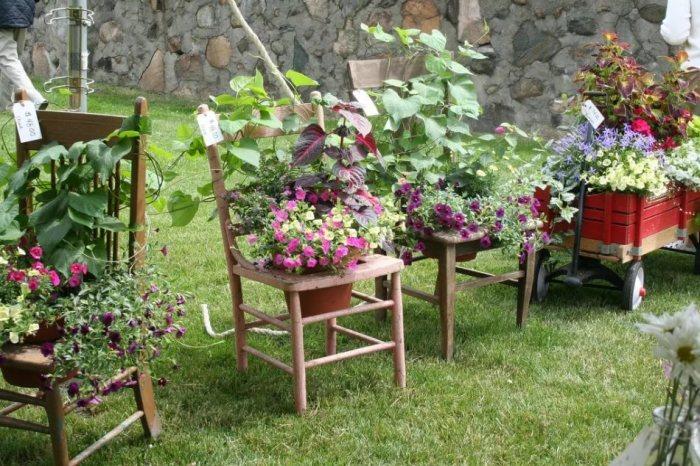 Цветники из старых стульев.