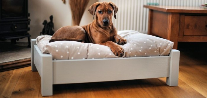 Просторная лежанка для собаки.