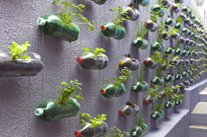 Мини-клумбы из пластиковых бутылок.