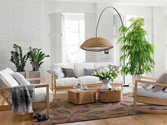 Живые растения сделают для уюта в квартире.