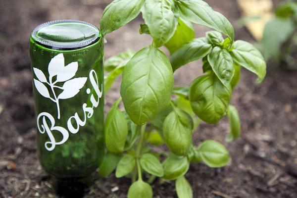 Полезные мелочи для сада из бутылок.
