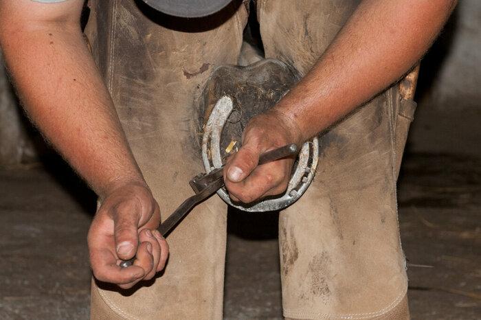 Выглядит процедура брутально. /Фото: www.equestrian.ru.